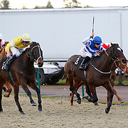 Lujeanie with Adam Kirby and Majuro with Leonna Mayer winning the 1.00 race