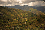 Fields of coca, the plant used to make cocaine, line hills in the Yungas region of Bolivia.  The Yungas and the Chapare are the two coca growing regions of Bolivia. Bolivia has advanced its own unorthodox approach toward controlling coca production, which veers markedly from the war on drugs and includes high tech monitoring of thousands of coca patches.  To the surprise of many, the program has significantly reduced illegal planting and without the violence that accompanied past American-backed eradication efforts here.