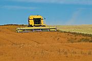 harvesting flax<br /> Cabri<br /> Saskatchewan<br /> Canada