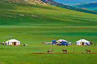 Mongolie, Province de Ovorkhangai, campement nomade, yourte // Mongolia, Ovorkhangai province, Nomad camp, yurt