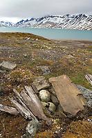 Pomor grave<br /> Trygghamna<br /> Svalbard<br /> Norway