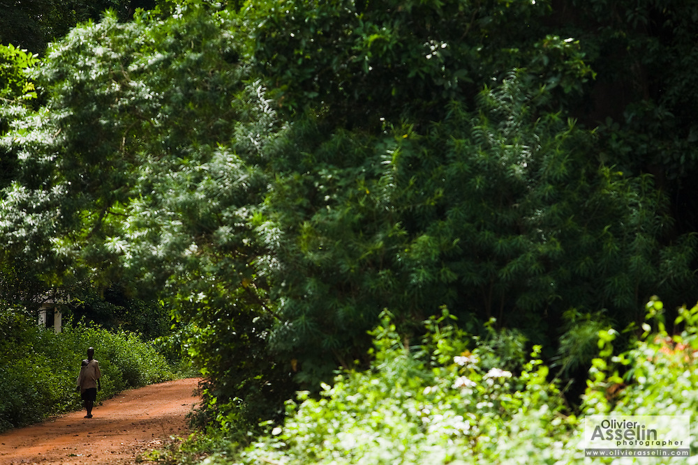 A man walks on a forest road as he approaches Tano Akakro, Cote d'Ivoire on Saturday June 20, 2009.