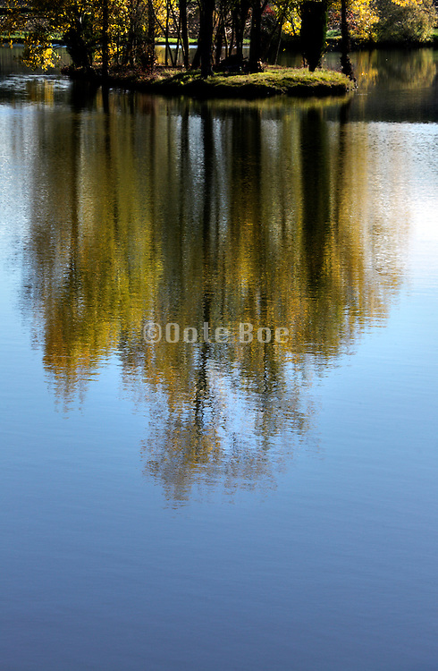 trees on a little island reflecting in water