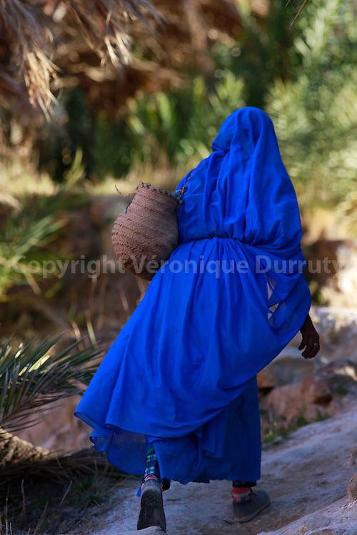 Oasis de Awju ( ou Aoujou ), Maroc Sud // Awju oasis, southern Morocco