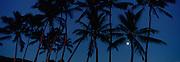 Moon, Hawaii<br />