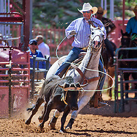 Kelsey Philips of Chinle competes as header in the 15 Handicap competition of the Red Rock Classic team roping competition at Red Rock Park in Church Rock.