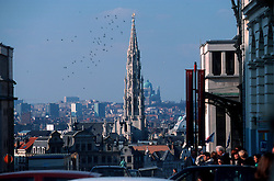Brussels Skyline with the spire of the Brussels City Hall towering over the Grand Place. (Photo © Jock Fistick)