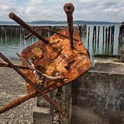 Corrosive Art - Tacoma, WA