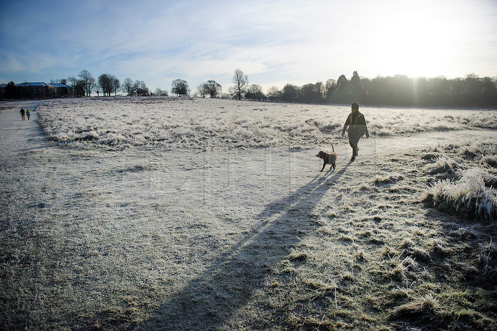 © Licensed to London News Pictures. 03/01/2017. London, UK. A woman walks her through a frost covered landscape in Richmond Park in London as temperatures in the capital drop below zero. . Photo credit: Ben Cawthra/LNP