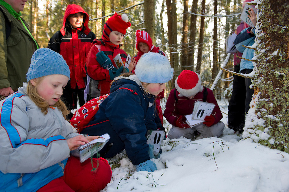 A group of Estonian school children in the woods learning about nature