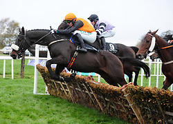 Brosna George and jockey Paul Townend go on to win the Allianz Handicap Hurdle during day one of the Down Royal Festival.
