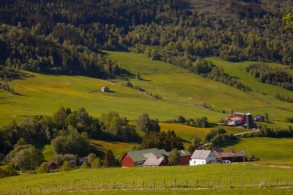 Farmland near Hopperstad Stave Church near Vik, Norway.