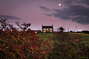Not a soul around. The moon rose slowly in the rose-colured sky and the sunset burned in the farmhouse windows. Pheasants screeched to each other as they glid across the farmland. The hedgerows were dripping in lush autumnal berries and flitting amongst the dense twigs, sparrows enjoyed the pick of the crop.