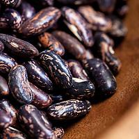 Dried, heirloom 'Blue Jay' beans.