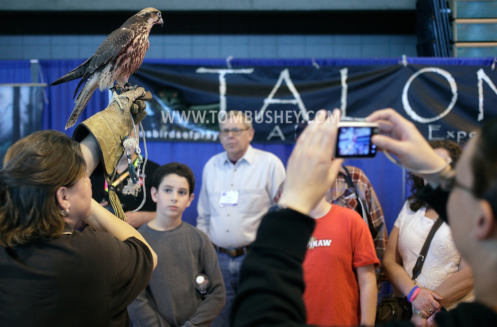 "Suffern, New York - Lorrie Schumacher holds a hawk during a presentation at the ""Talons - A Birds of Prey Experience"" exhibit at  the Northeast Astronomy Forum and Telescope Show at Rockland Community College on April 17, 2011. Schumacher is a master falconer."