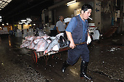 "An employee at the world's biggest fish Market in Tsukiji, Tokyo uses a wooden trolley to carry large tuna auctioned at the market to a seller. More than 2,300 tons of fish -- about one-third of the total consumed in Japan -- passes through Tsukiji each day and offers more than 450 varieties of marine products. The market, which dates back almost 75, will move to a high-tech site on a man-made island in Toyosu, which is well-documented as being contaminated with benizine. Not that Tsukiji is much better off -- many buildings in the aging site are stuffed with asbestos. ""Choose your poison,"" says one Tsukiji official. The new site, which the government plans to be readied by 2012, will be significantly larger, with more room for off-loading and for sellers to display their goods. The current location, says one official, is too cramped and collisions between motorised carts and pedestrians means accidents occur almost daily. Meanwhile, with fish sales down, it is becoming more difficult to justify Tsukiji's prime location and property developers are keeping a close watch on Tsukiji land, which is just a few blocks from the ritzy Ginza district of Tokyo, where per-meter land prices are the highest in the world...The move to the new Toyosu location, meanwhile, has been at the center of heated debate -- clean-up operations alone are estimated to cost ¬?67 billion (around US$660 million), with a further ¬?450 billion to build a new marketplace. Big wholesalers favour the move, but the 1,600-plus merchants mostly are against it. Yoshiharu Kiku, a Tsukiji storeowner who began working at the market 60 years ago, expresses bewilderment at the plans, saying that the name Tsukiji itself has become synonymous with the world's best and most eclectic selection of fish. ""This place has a long tradition. Why break it and start from scratch all over again?"" he says."