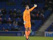 RYAN HUDDART during the Barclays U21 Premier League match between Brighton U21 and Arsenal U21 at the American Express Community Stadium, Brighton and Hove, England on 1 December 2014.
