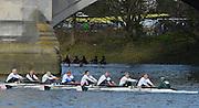 "London. ENGLAND. Saturday 26/01/2013 2013 Quintin Head, River Thames. ..Description -..[Mandatory Credit: Peter Spurrier/Intersport Images]..[Head Race: Processional"" Time Trial].."