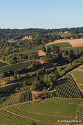 Chehalem winery and surrounding estate Coral Creek vineyard, Chehalem Mountains AVA, Willamette Valley, Oregon