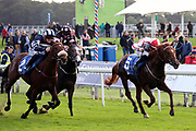 SWORD BEACH (5) ridden by Tom Marquand and trained by Eve Johnson Houghton winning The Elevator Company EBF Novice Auction Stakes over 1m (£15,000) in a PHOTO FINISH  from ARCH MOON (2) ridden by Callum Roadriguez during the October Finale Meeting at York Racecourse, York, United Kingdom on 11 October 2019.