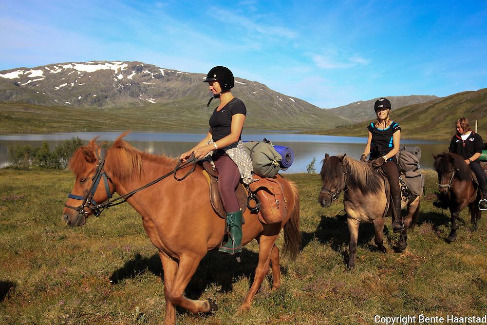 Dyrhaug ridesenter, Ramsjøhytta.  Foto: Bente Haarstad Flere firma satser på hesteturisme fjellet i Tydal, og i bygda Stugudal er det flere islandshester enn fastboende. There are many possibilities for riding in the mountains in Tydal in Mid-Norway. Dyrhaug Ridesenter ved Ramsjøhytta (DNT) i Sylene.