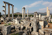 Temple of Aphrodite, begun 1st century BC and finished during the reign of Roman Emperor Augustus, Aphrodisias, Aydin, Turkey. 14 of the over 40 Ionic columns of the temple remain today, as well as the foundations of the cellars. The temple formed the centre of the city and occupies its Northern section. It was later altered when it became a Christian basilica. Many examples of statuary have been found around the temple (there is a marble quarry close by) and it is thought that a school of sculpture was based here. Aphrodisias was a small ancient Greek city in Caria near the modern-day town of Geyre. It was named after Aphrodite, the Greek goddess of love, who had here her unique cult image, the Aphrodite of Aphrodisias. The city suffered major earthquakes in the 4th and 7th centuries which destroyed most of the ancient structures. Picture by Manuel Cohen