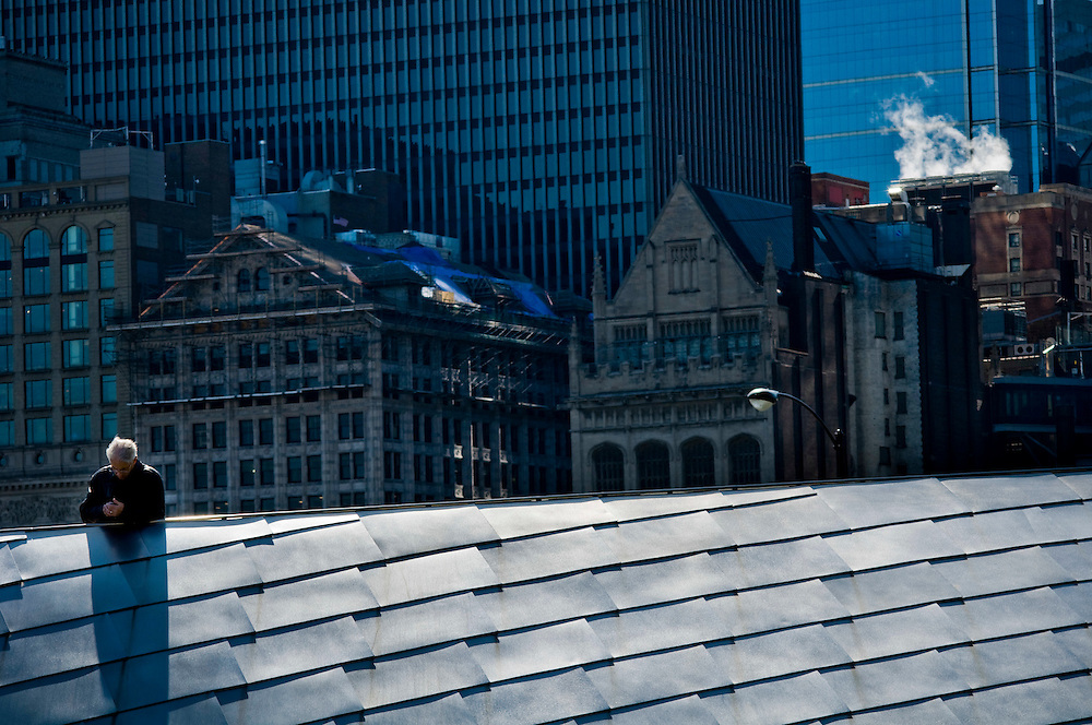 View from Millenium park onto buildings in downtown Chicago<br /> <br /> Photographer: Chris Maluszynski/MOMENT