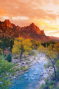 Evening light on Watchman Peak above the Virgin River, Zion Canyon, Zion National Park, Utah USA