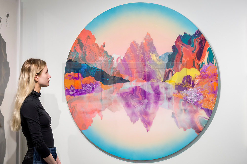 """© Licensed to London News Pictures. 15/01/2019. LONDON, UK. A staff member views """"Earth intruders"""", 2018, by Kate Shaw at the Cube gallery stand.  Preview of London Art Fair 2019 at the Business Design Centre in Islington.  The annual fair showcases exceptional modern and contemporary art from the 20th century to present day and opens 16 to 20 January.  Photo credit: Stephen Chung/LNP"""