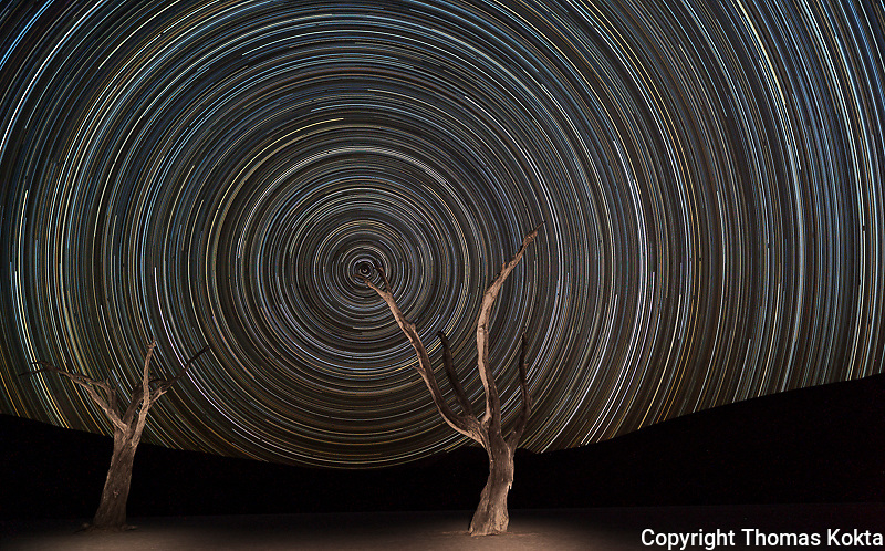 Star Trails and Camel Thorn Trees