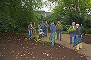 Mannheim. 25.07.17   Gärtnern im Luisenpark<br /> Luisenpark. Freundes des Luisenpark dürfen gärtnern. Projekt Mein Garten. Unter Anleitung darf gepflanzt werden.<br /> <br /> <br /> BILD- ID 0012  <br /> Bild: Markus Prosswitz 25JUL17 / masterpress (Bild ist honorarpflichtig - No Model Release!)