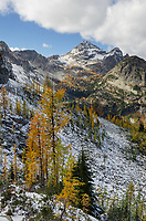 Black Peak and larches in autumn color. North Cascades Washington