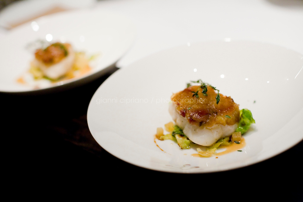 """9 December, 2008. New York, NY. A dish of Chatham Cod\ is ready for its customers here at the Craft restaurant in Manhattan, NY. Tom Collichio at Craft is """"on stage"""" for customers in the open kitchen of Craft's dining room, a New York restaurant. Several restaurants offer special seatings with their celebrity chefs.<br /> <br /> ©2008 Gianni Cipriano for The New York Times<br /> cell. +1 646 465 2168 (USA)<br /> cell. +1 328 567 7923 (Italy)<br /> gianni@giannicipriano.com<br /> www.giannicipriano.com"""