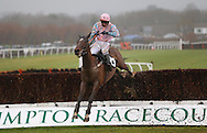 Plumpton, UK. 12th December 2016. <br /> Paddy Oscarose ridden by Paddy Brennan clear the final fence before landing the Crawley Town Football Club Handicap Chase<br /> &copy; Telephoto Images / Alamy Live News
