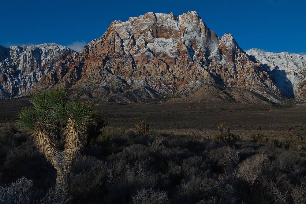 A snowy sunrise at Red Rock Canyon Conservation Area, Las Vegas, Nevada, USA