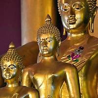 """Three Buddha Statues at Wat Phra Singh in Chiang Mai, Thailand <br /> These three almost identical yet successively larger Buddha statues are on the altar below the huge Thong Thip Buddha at Wat Phra Singh. They are sitting in the """"Calling the Earth to Witness"""" position which portrays the Lord Buddha shortly before enlightenment."""