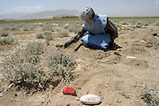 demining in the Bagram region by UNMACA local deminers..the red and white painted stones show the limit of the demined area. white on the side that is safe and red on the side that isn't..Monday May 15th 2005...