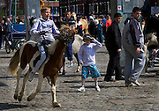 The horse market at Smithfield, Dublin takes place on the first Sunday of every month. People come from all over Ireland to trade horses and equipment. It's absolute chaos, with young kids galloping across the cobbles on distressed looking ponies, horses whinnying, gardai chasing jaunting cars on their bicycles. A big part of the horse scene involves the keeping of animals, by Dublin urban youth, in gardens or public areas. The Dublin Society for Prevention of Cruelty to Animals says that the market facilitates the sale of horses to under-16s, who are then unable - or unwilling to look after them. Amongst the dozens of horses visible, I did see a couple of examples of cruelty - the most obvious one of all was by an elderly man, kicking his pony in the stomach for no apparent reason. ....There's talks by Dublin City Council of moving the market out of the city - as Smithfield becomes increasingly gentrified, the more urbane of the urban dwellers in the surrounding apartments are apparently unimpresssed with the smell of horse shit once a month!....Editorial Use only