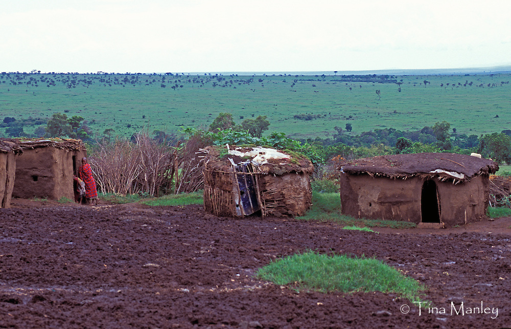 KENYA, Masai Mara National Reserve;<br /> Traditional circular houses made of bent branches daubed with dry mud and cow manure and surounded by a thorn fence as protection from lions.