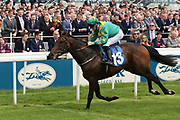 SHAWAAMEKH (13) ridden by David Nolan and trained by Declan Carroll winning The Irish Thoroughbred Marketing Handicap Stakes over 7f (£15,000)  during the Midsummer Raceday held at York Racecourse, York, United Kingdom on 14 June 2019.