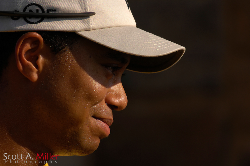 Tiger Woods during the 2007 Players Championship at TPC Sawgras on May 11, 2007 in Ponde Vedra Beach, Florida...©2007 Scott A. Miller