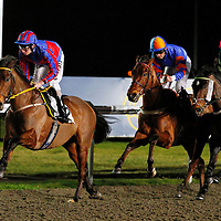 Kempton 26th January