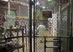 Guantanamo Media Tour, 7 Oct. 2016
