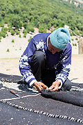 LAKE AZIGZA - 26TH MAY 2015 - Local working on a traditional Berber, Nomadic tent at Aguelmane Azigza lake in the Middle Atlas Mountains in Morocco near Khenifra