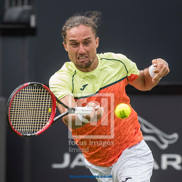 Alexandr Dolgopolov (UKR) on day two of the Ricoh Open Tennis Tournament at the Autotron, Rosmalen, Netherlands.<br /> Picture by Joep Joseph Leenen/Focus Images Ltd +316 5261929<br /> 13/06/2017<br /> ***NETHERLANDS OUT***