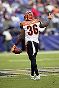 Cincinnati Bengals strong safety Shawn Williams (36) celebrates after intercepting a third quarter pass and running it back to the Baltimore Ravens 32 yard line during the NFL week 11 regular season football game against the Baltimore Ravens on Sunday, Nov. 18, 2018 in Baltimore. The Ravens won the game 24-21. (©Paul Anthony Spinelli)
