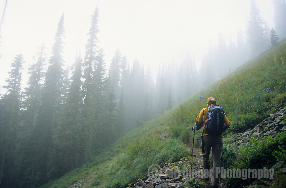 A young woman hikes in the Tatoosh Range, Mount Rainier National Park, Washington.