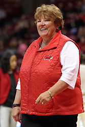 04 January 2015:  Julie Dobson during an NCAA MVC (Missouri Valley Conference) women's basketball game between the Southern Illinois Salukis and the Illinois Sate Redbirds at Redbird Arena in Normal IL