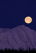Full Moon, Moon, Moonrise, Sunrise, sunset, Denali National Park, Alaska