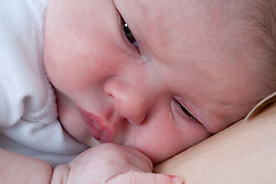 Portrait of a new born baby,